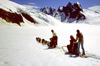 Best Alaska Shore Excursions