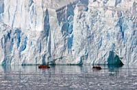 Best Antarctica Shore Excursions