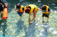 Extraordinary Excursions: Bahamas for Families