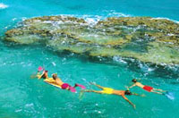 Best Bermuda Shore Excursions