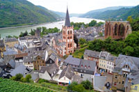 Rhine River Cruise Basics