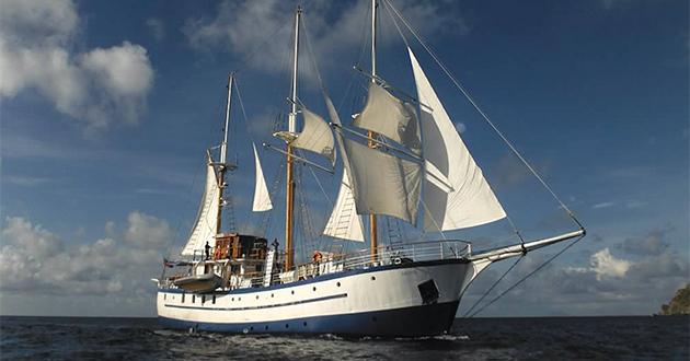 Sagitta (Image)