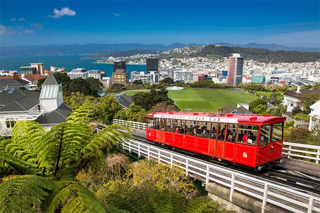 New Zealand Cruise Tips