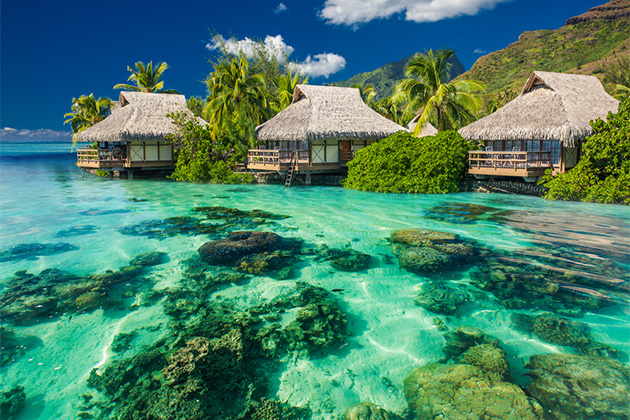 South Pacific Cruise Tips Cruise Critic - Cruise to tahiti