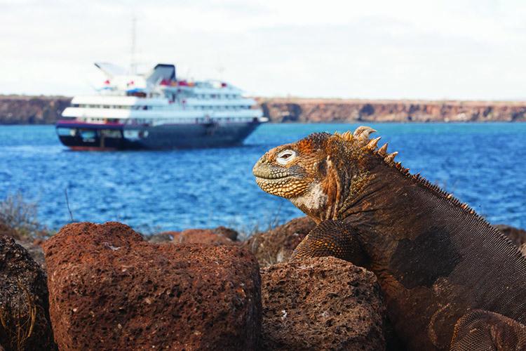 Silversea Cruises cruise line