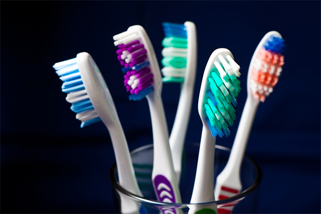 closeup of cup full of toothbrushes