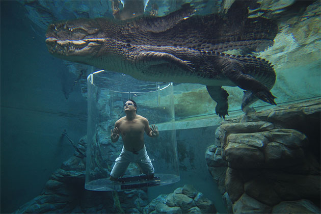 Man in underwater cage at australia attraction
