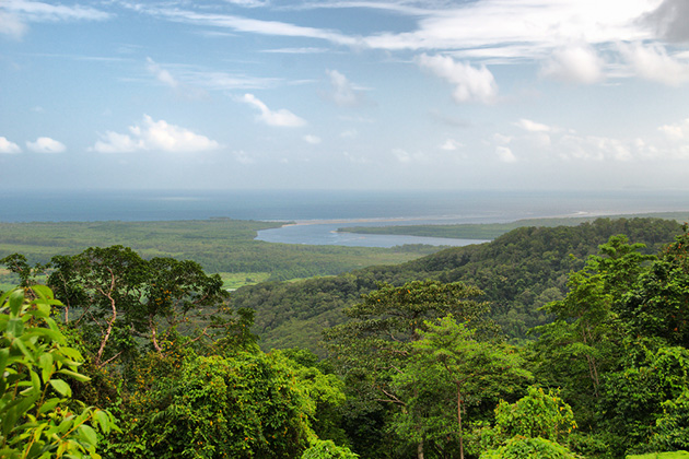 Aerial view of Daintree National Park