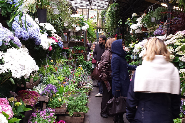 Paris flower market tour