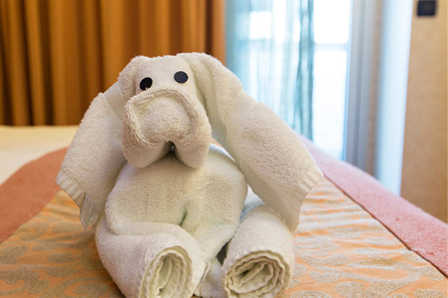 Towel animal on Carnival Freedom