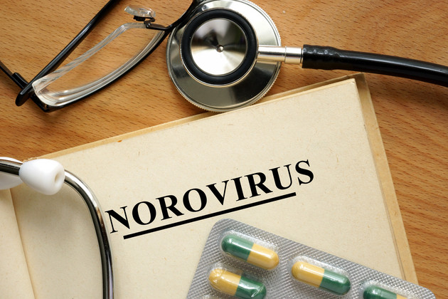 Norovirus Medical file