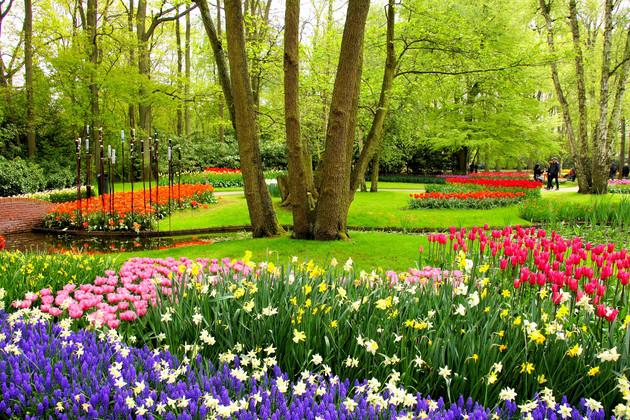 Keukenhof Gardens, Netherlands in spring