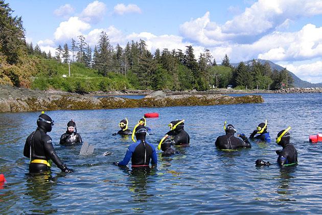 Snorkeling in Alaska