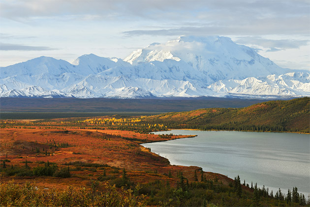 Denali National Park landscape in the fall months