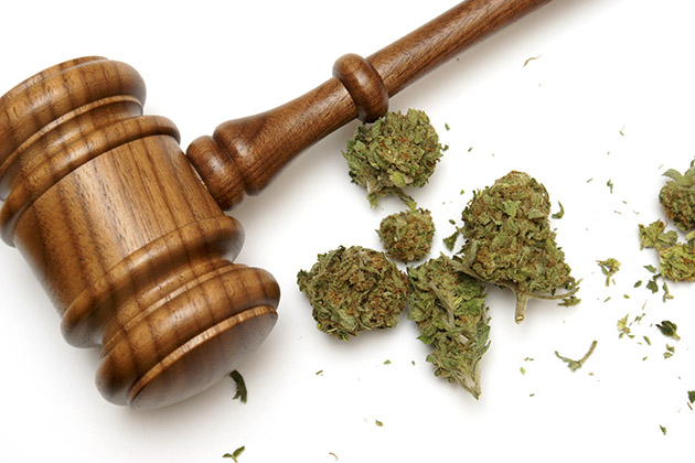 Marijuana and a Gavel