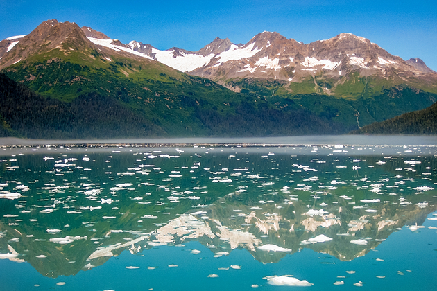 Kenai Fjords National Park in summer, Alaska, USA