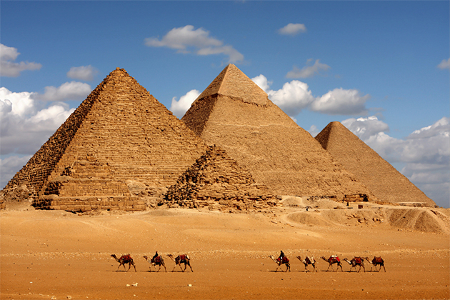 Line of camels in front of the Pyramids of Giza on February 3, 2009