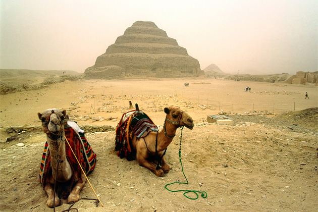 To camels sitting in front of Saqqara, The Step Pyramid of Zoser, Egypt on a hazy day