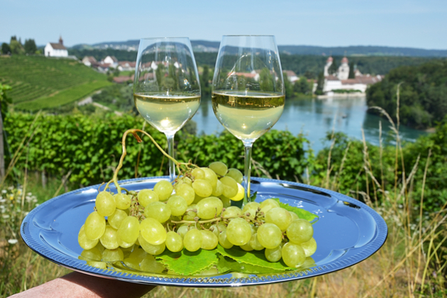 Wine on the Rhine River