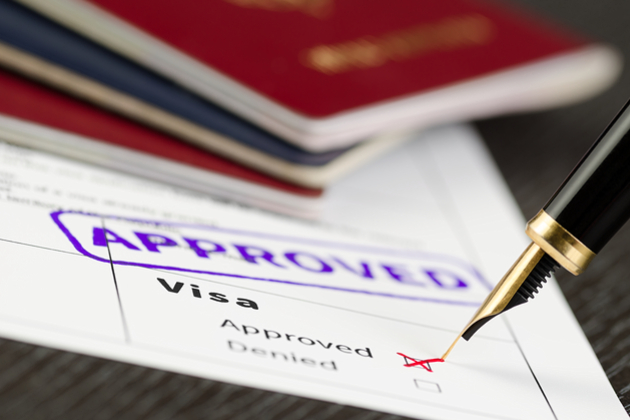Approved travel visa