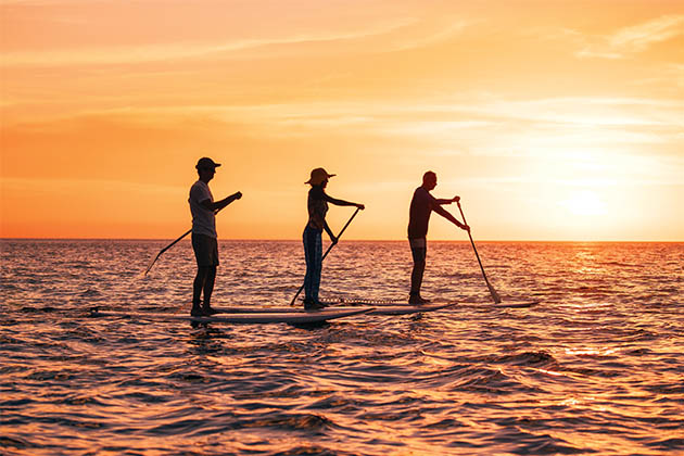Group of people stand-up paddleboarding at sunset