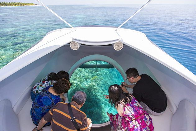 Family looking out the back of a glass-bottom boat in Caribbean waters