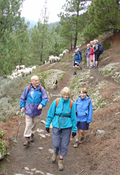 Ramblers-hiking-group