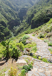 Tenerife-hiking-cruise
