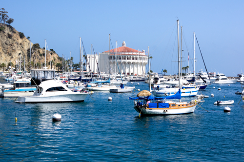 Sailboats and yachts in Catalina Harbor (photo:  cvalle/Shutterstock