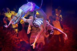 cirque dream
