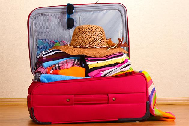 Cruise suitcase