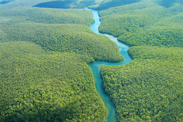 Aerial view of the Amazon River and rainforest.