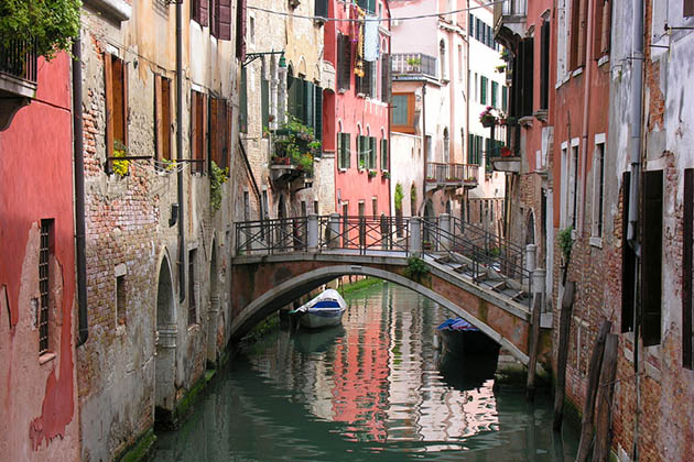 R Doge 5 Tips for a Venice Ri...