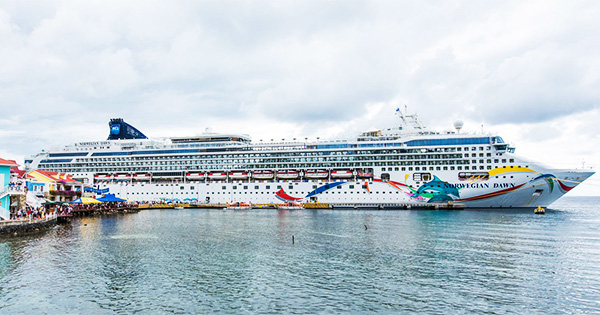 Norwegian Dawn Cruise Ship Emerges From Dry Dock After Massive Refit