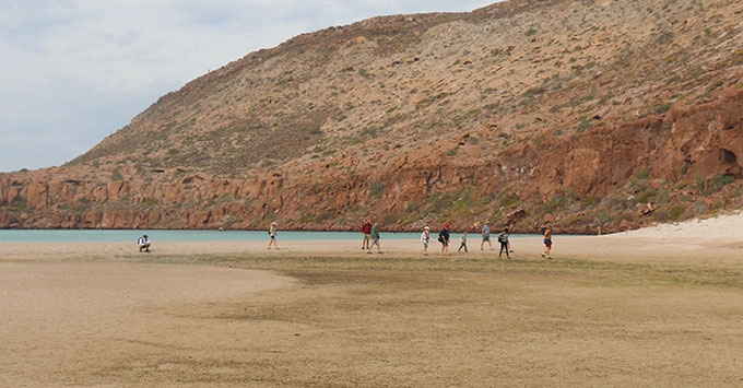Hikers heading out on a longer exercise hike on Isla Partida