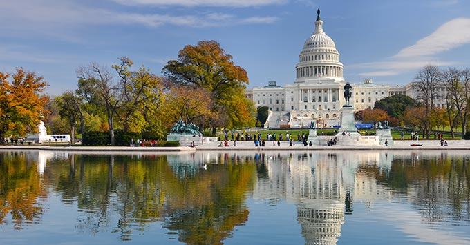 U.S. Capitol in Washington D.C.