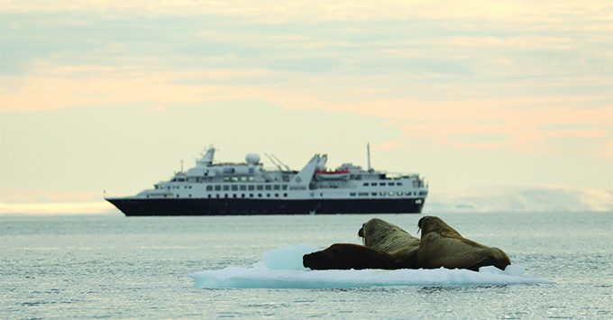 Silver Explorer in Northeast Passage, with walrus in the foreground