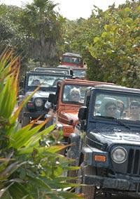 costa maya jeeps