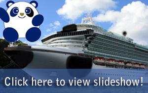 Panda Cruises