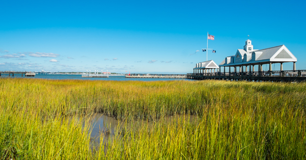 Charleston Shore Excursions