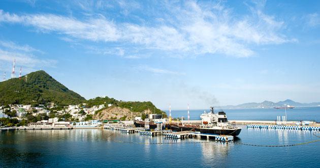 Manzanillo Cruise Port