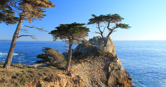 Monterey Shore Excursions