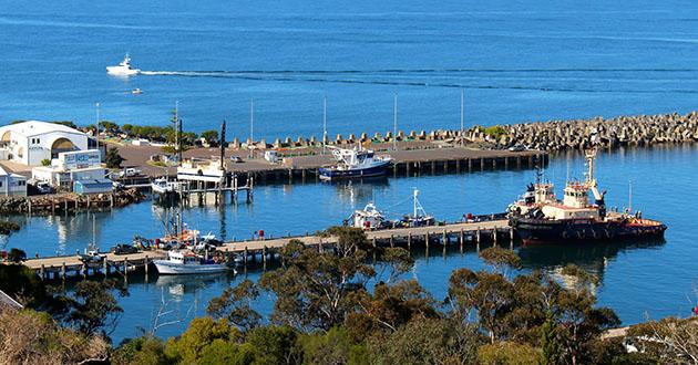 Best Eden Australia Cruise Shore Excursion Amp Tour Reviews Cruise Critic