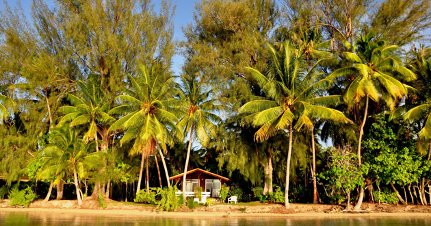 Raiatea Shore Excursions