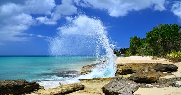 St. Croix Shore Excursions