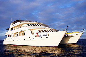 Cruise critic roll call celebrity millennium reviews
