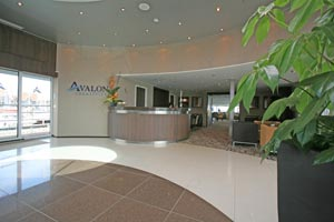 Avalon Creativity - The Lobby