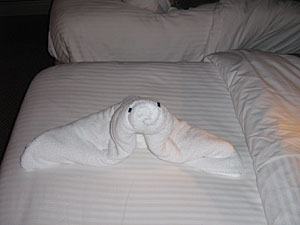 Carnival Victory - Towel Animal