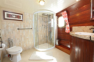 Sagitta - Bathroom in the Owner's Suite