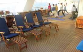 National Geographic Sea Lion - Teak Deck